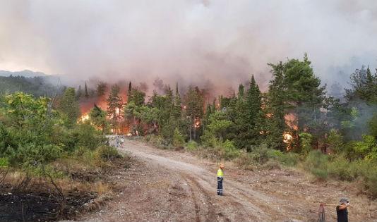 Incendio Morrone, fiamme a Prezza